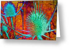 Art Thistles Greeting Card