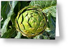 Artie Choke - Artichokes By Diana Sainz Greeting Card