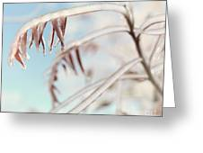 Artistic Abstract Closeup Of Frozen Tree Branches Greeting Card