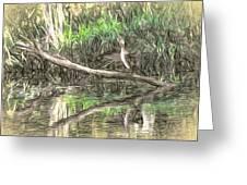 Artistic Drying Cormorant- Black Bird Sitting On Log Over Water Greeting Card