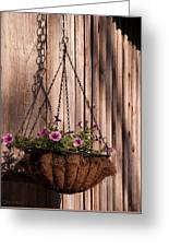 Artistic Hanging Basket Of Petunias Greeting Card