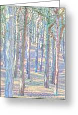 Artistic Trees Greeting Card