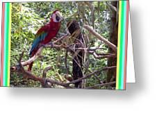 Artistic Wild Hawaiian Parrot Greeting Card