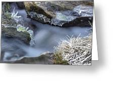 Artistry In Ice 20 Greeting Card