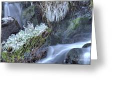 Artistry In Ice 22 Greeting Card