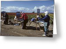 Artists Painting Tulip Fields Standing In A Row  Greeting Card
