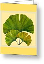 Arts And Crafts Movement Ginko Leaves Greeting Card