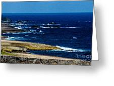Aruba Coast Greeting Card