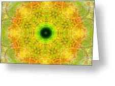 Moss Mandala Greeting Card