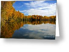 As The Leaves Turn Greeting Card