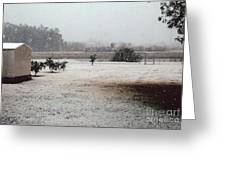 As The Snow Falls Greeting Card