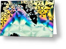 Ascorbic Acid Crystals In Polarized Light Greeting Card