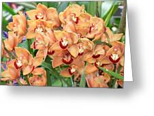 Asian Corsage Orchid Greeting Card