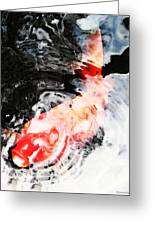 Asian Koi Fish - Black White And Red Greeting Card