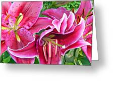 Asian Lily Flowers Greeting Card