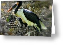 Asian Stork With Message Greeting Card
