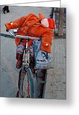 Asleep On A Bicycle Greeting Card