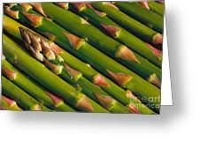 Asparagus Greeting Card