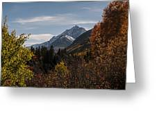 Aspen And Mountains 1 Greeting Card
