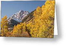 Aspen And Mountains 4 Greeting Card