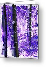 Aspen Grove 5 Greeting Card
