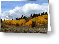 Aspen Hillside Greeting Card