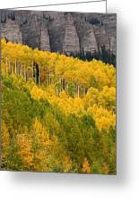 Aspen In Autumn At Silver Jack Reservoir Greeting Card