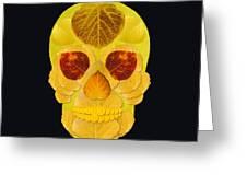 Aspen Leaf Skull 1 Black Greeting Card