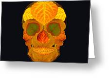 Aspen Leaf Skull 2 Black Greeting Card