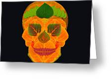 Aspen Leaf Skull 3 Black Greeting Card