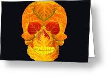 Aspen Leaf Skull 6 Black Greeting Card
