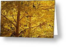 Aspen Leaves Textured Greeting Card