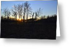 Aspen Prairie Sunset Greeting Card
