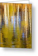 Aspen Reflection Greeting Card