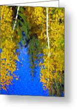 Aspen Reflection Greeting Card by Pat Now