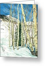 Aspen Shelter Greeting Card