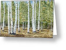 Aspen South Saddle Blue Mtn 24 X 48 Greeting Card