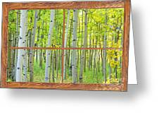 Aspen Tree Forest Autumn Picture Window Frame View  Greeting Card