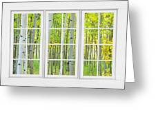 Aspen Tree Forest Autumn Time White Window View  Greeting Card by James BO  Insogna