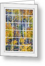 Aspen Tree Magic Cottonwood Pass White Window Portrait View Greeting Card by James BO  Insogna