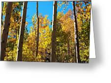 Aspen Trees In Fall Greeting Card