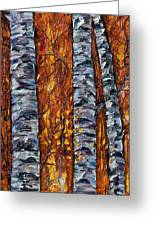 White Trees  Original Oil Painting  Greeting Card