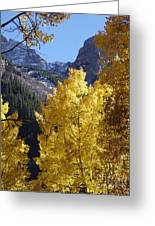 Aspen Window Greeting Card