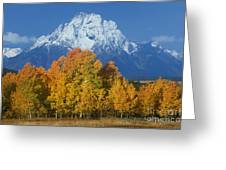 Aspens Fall Mount Moran Grand Tetons National Park Wyoming Greeting Card