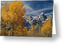 1m9352-aspens In Autumn And The Teton Range Greeting Card