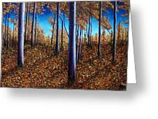 Aspens In Autumn II Greeting Card