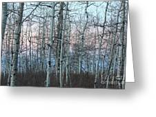 Aspens In Twilight Greeting Card