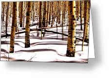 Aspens In Winter Greeting Card by Claudette Bujold-Poirier