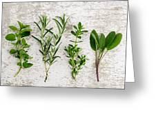 Assorted Fresh Herbs Greeting Card by Nailia Schwarz