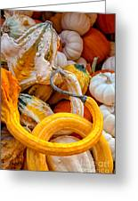 Assorted Gourds Greeting Card